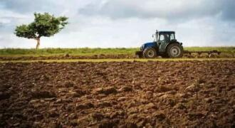 أرض زراعية للبيع في الهيجانة طريق المطار للبيع مساحة 67 دونم